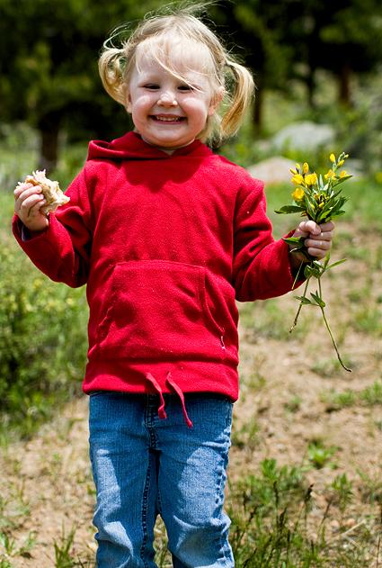 flowersandsandwich