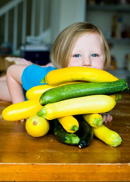 zucchinifort